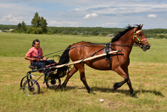 Кульминацией праздника стали конные бега и скачки