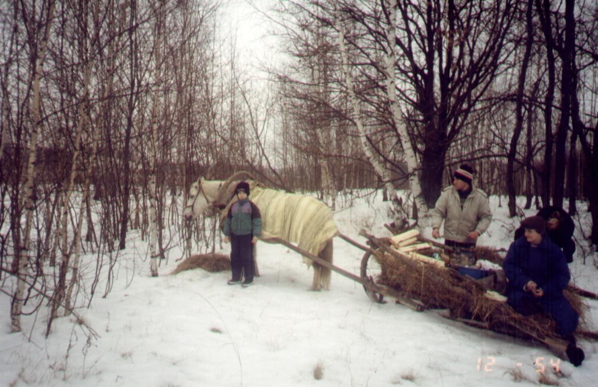 фото 06 - Тимур Барамыков