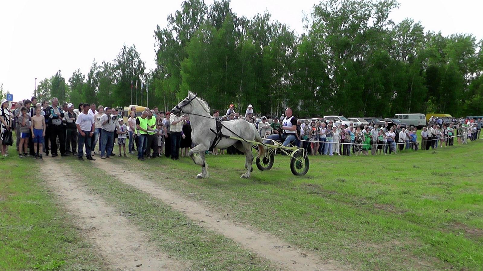 Sabantuy-2016-obzornye-foto-676-Bastanovo