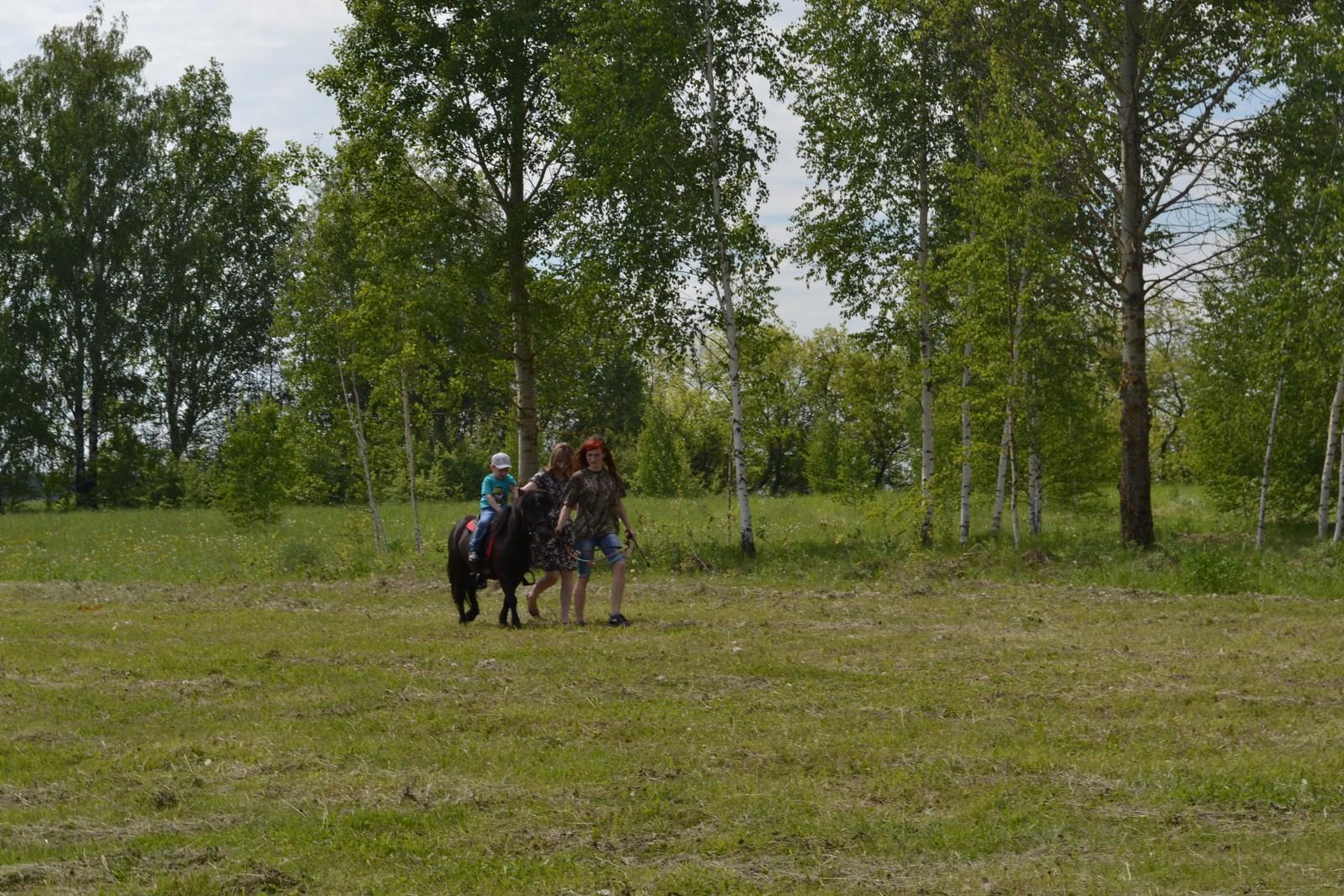 Sabantuy-2016-obschaya-panorama-441-Bastanovo