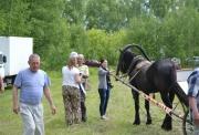 Sabantuy-2016-obschaya-panorama-425-Bastanovo