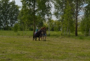Sabantuy-2016-obschaya-panorama-442-Bastanovo
