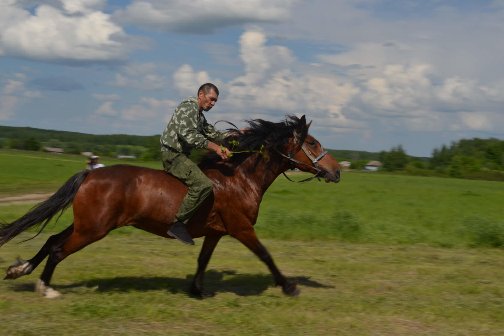 Sabantuy-2016-Skachki-i-bega-228-Bastanovo