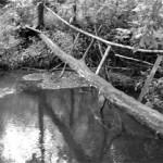 река Лея